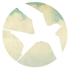swallow-circular